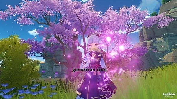 lokasi sakura bloom di inazuma genshin impact lengkap