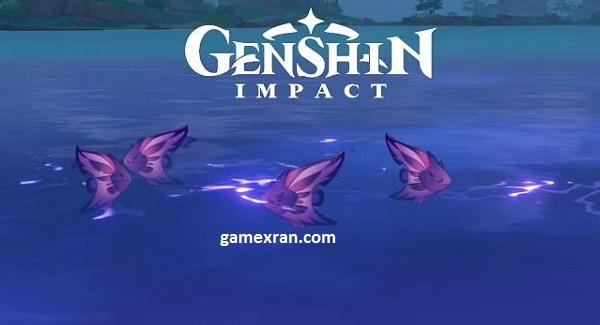 lokasi raimei angelfish genshin impact